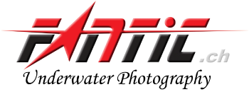 Fantic - Unterwater Photography